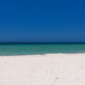 Что на фотографии — пляж или дверь? — Что вы творите на Wonderzine
