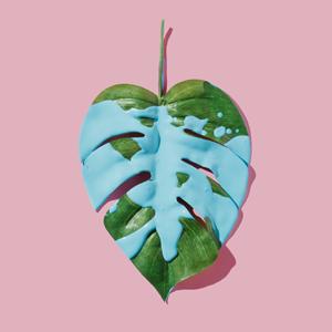Гринвошинг: Как марки и товары притворяются «зелёными» — Жизнь на Wonderzine