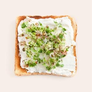 От жиров до углеводов: Главное, что нужно знать о питании — Еда на Wonderzine