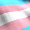 В Венгрии запретили юридически совершать трансгендерный переход