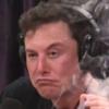 Илон Маск кродёться: Google назвал мемы 2018 года