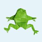 «Не хуже, чем лягушка, но гораздо проще»: 20 увлекательных фактов о контрацепции