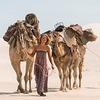 Адам Драйвер, Миа Васиковска и верблюды в трейлере фильма «Тропы»