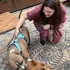«Для собак всех пород и размеров»: Я делаю карту дог-френдли-мест в России