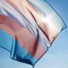В Госдуме предложили ввести запрет на «пропаганду трансгендерности»