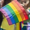 Пользователи соцсетей обвинили бренд пломбира в гомофобии