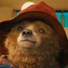Историю о медвежонке Паддингтоне превратят в сериал для детей