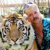 Investigation Discovery работает над сиквелом «Tiger King»