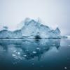 WWF России запустил образовательную платформу об изменении климата