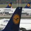Lufthansa заменит приветствие «Дамы и господа» на гендерно-нейтральное