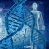 Учёные сомневаются,  что только генетика влияет на ориентацию