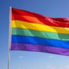 В Черногории легализовали гомосексуальные браки