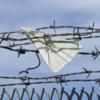 Глава Якутии запретил принимать на работу мигрантов