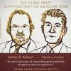 Нобелевскую премию присудили за открытие в лечении рака
