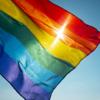 В Коста-Рике легализовали гомосексуальные браки
