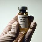 Исследование: при вакцинации беременные женщины передают детям иммунитет к коронавирусу