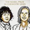 Две учёные получили Нобелевскую премию по химии за «генетические ножницы»