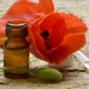 В России разрешили выращивать опийный мак в медицинских целях