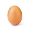 Стал известен создатель инстаграм-аккаунта World Record Egg