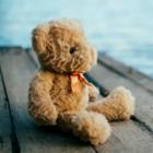 Минпросвещения запретит усыновлять больше одного ребёнка в год