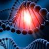 Новые данные: найдена связь нарушений эрекции с генетикой