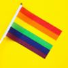 В СПЧ вступились за воспитание детей однополыми парами