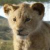 Симба, Тимон и Пумба в первом трейлере «Короля Льва»