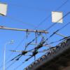 «Архнадзор» потребовал сохранить оставшиеся троллейбусные маршруты в Москве