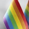 Еврокомиссия направит Венгрии письмо с официальным уведомлением из-за закона о «пропаганде» ЛГБТ