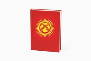Кандидат в парламент Киргизии выступила с речью о правах женщин