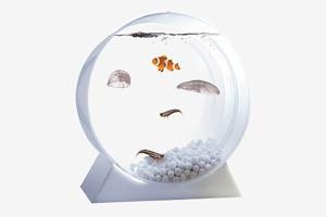 Настольный аквариум  с медузами Jellyfish Art