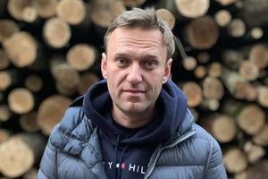 Правительство Германии: Алексея Навального отравили веществом группы «Новичок»
