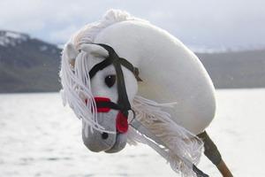Новое увлечение финских девушек — игрушечные лошадки