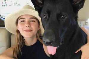 На кого подписаться: Собака Кирнан Шипки — Фрэнки