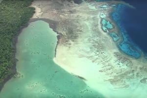 В закладки: 40 часов ASMR-кино об океане