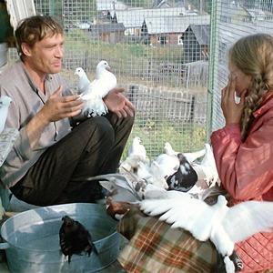 Токсичная простота: Почему пересматривать фильм «Любовь и голуби» сегодня непросто