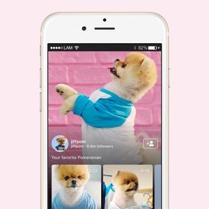 IGTV: Чем примечательно новое приложение для вертикальных видео