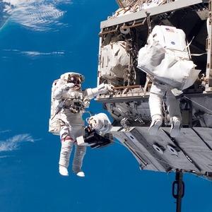 Наука о космосе: Зачем на орбиту отправляют мышей, пиво и сперматозоиды