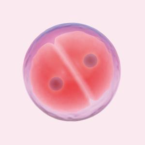Только не дочь: Почему люди делают селективные аборты