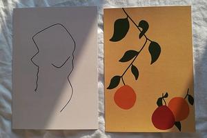 На кого подписаться: Нежные рисунки художника Джеймса Уилсона