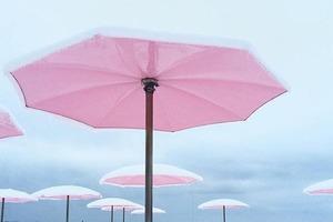 На кого подписаться: Инстаграм о любви к розовому