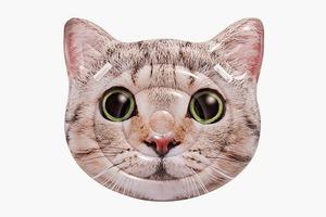 Надувной кот-плот  для приключений в отпуске