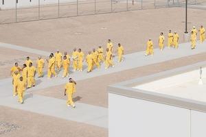 В закладки: Проект The New York Times об истории рабства