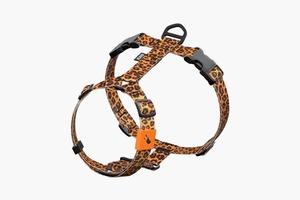 Забавная леопардовая шлейка для собаки Staya
