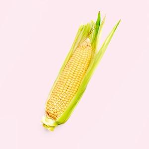 Что такое ГМО:  Угроза здоровью  или будущее планеты