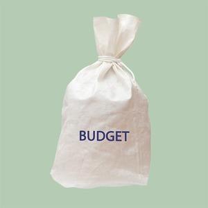 Как парам вести общий бюджет: Советует экономист