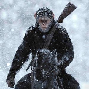 Эволюция духовности: Что говорит о людях «Планета обезьян»