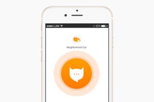 Что скачать: Приложение для перевода с кошачьего на человеческий MeowTalk