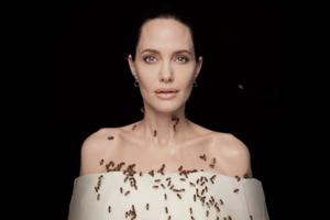 Анджелина Джоли снялась с роем пчёл, чтобы привлечь внимание к проблеме их вымирания