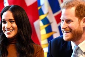 Принц Гарри и Меган Маркл намерены стать финансово независимыми